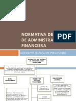 196975975-Normas-Tecnicas-de-Presupuesto.pdf