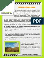 080819 Reporte Diario SSOMA
