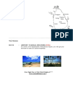 Whale watching _camp.pdf