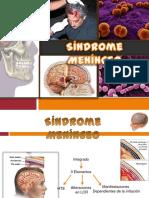 sindrome meningo encefalitico