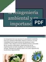 La Reingeniería Ambiental y Su Importancia
