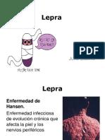 Historia natural de la lepra