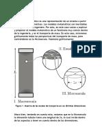 Modelo Matematico Transporte de Masa Microescala