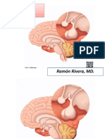 2. Adenohipofisis y Neurohipofisis