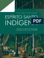 Espirito Santo Indigena Completo Site