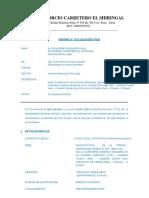 INFORME Nº01-OBRAS DE ARTE Y DRENAJE_LOGO.docx