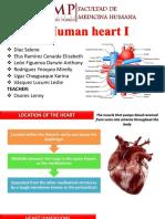 Human Heart I
