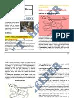 Fisiopatologia Del Shock Dr. Cabrera