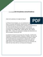 Procesamientos-en-plantas-concentradoras-de-la-región-de-nazca (1).docx