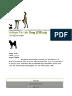 Dog.docx