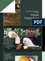 Cacao Venezolano Armando Nerio Hanoi Guedez Rodriguez