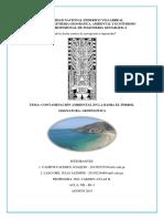 Bahia El Ferrol Informe Final