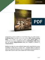 CS StringsRuns Manual