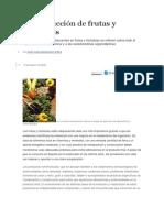 La Producción de Frutas y Hortalizas