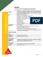 silicone (1).pdf