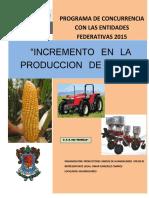 Proyecto HUANDACAREO