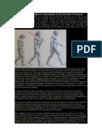 Cálculos Matemáticos Descartan La Evolución Humana