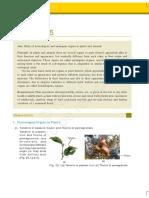 lelm215.pdf