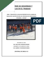 Informe de Seguridad y Salud Ocupacional-Adicional