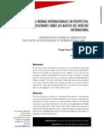 Las Normas Internacionales en Perspectiva Reflexiones Sobre Los Matices Del Derecho Internacional