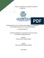 Dialnet-ProblematicaSocialYCulturalQueSePresentaAlInterior-65032