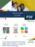 Mallas de Aprendizaje- PTApresentacion (1)