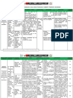 487151793_matrizdeprogramacinanualdecta.docx