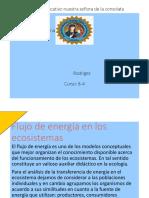 Flujo de energia en los ecosistemas y ciclos biogeoquimicos
