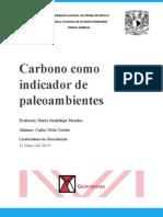 Carbono y Paleoambientes