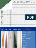 243402407-ENTEROBACTERIAS-PRUEBAS-BIOQUIMICAS-2-pptx.pptx