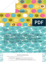 Documental Perros 150611234638 Lva1 App6891