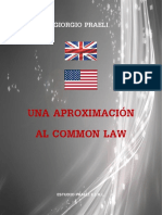 UNA APROXIMACIÓN AL COMMON LAW