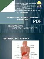 Aparato Digestivo Cll