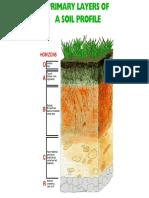 Soil Horizons for CDE