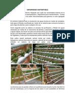 Universidad Sustentable t.e.