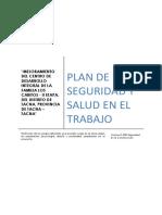 Plan de Seguridad_cabitos