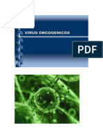 Virus Oncogenicos Humanos