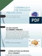 DAÑOS CEREBRALES A CAUSAS DE SUSTANCIA PSICOACTIVAS.pptx