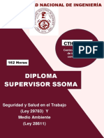 Diplomado SSOMA
