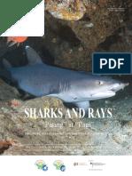 NPOA Sharks 2017-2022.pdf