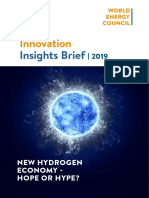 WEInnovation Insights Brief New Hydrogen Economy Hype or Hope
