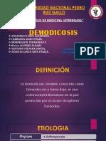 Demodicosis Ft