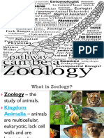 Lesson 1-ZOO 10 Introduction.ppt