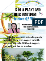 Parts of a Plant and Their Functions q2 w6