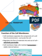 Ch 7.3 Cell Transport (1)