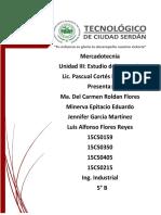 Estudio de Mercado_ Inv.docx