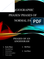 Angiographic Phases