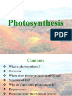 photosynthesis-100503122339-phpapp01-131021183200-phpapp02.ppt