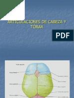 Articulaciones de Cabeza y Torax