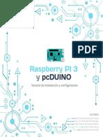 Raspberry manual
